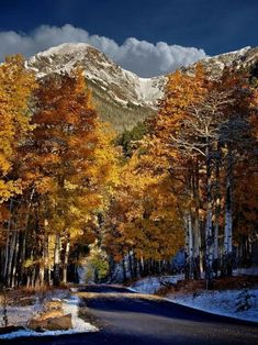 The Rocky Mountains, Colorado Rocky Mountains, Beautiful World, Beautiful Places, Living In Colorado, Colorado Rockies, Colorado Usa, Autumn Scenes, Fall Pictures, Beautiful Landscapes