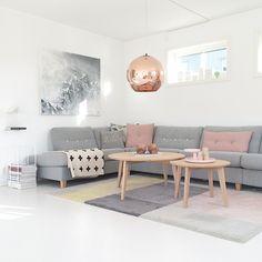 graues-Sofa-Wohnzimmer-Ideen