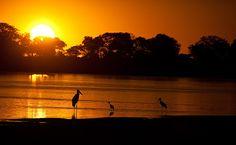 Rio Araguaia, Parque Estadual do Cantão -Com 2 630 km, a maior parte navegável, o Rio Araguaia atrai praticantes de pesca amadora de todo o país e turistas do Centro-Oeste, que buscam as praias de areias claras e observam a fauna local