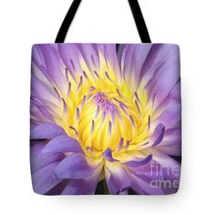 Centered - Water Lily Tote Bag by Carol Groenen #waterlilies #totebags #floraltotebags