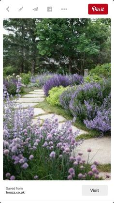 Mixed perennial bed with flagstone walkway