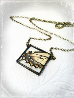 Monarch Butterfly Wing Necklace Soldered Butterfly by Mystarrrs