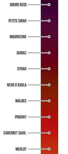 Piękna skala kolorów wina// nawet ja takich kolorków nie odróżniam za bardzo
