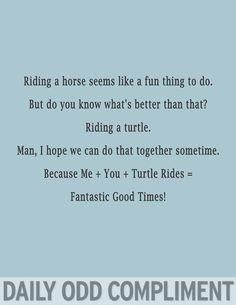 @shell roloson Wanna ride some turtles? Cause I like turtles.