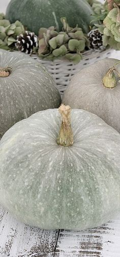 Pumpkins...love the color of these.