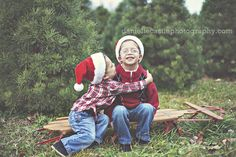 family photos, family photos at a christmas tree farm, family christmas photos