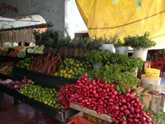 fresh veggies~ Mercado 23, Cancun, Mexico~House of History, LLC.