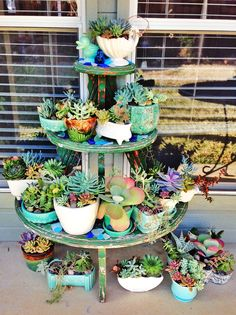 McCoy pottery and succulents: inspiration for use of Metal tree shelves and tillandsias. Succulent Display, Hanging Succulents, Cacti And Succulents, Growing Succulents, Succulents In Containers, Succulent Gardening, Container Gardening, Air Plants, Indoor Plants