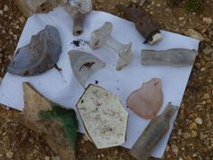 There is a lot of old glass, pottery and scraps, on an old Roman road near http://villaroquette.com