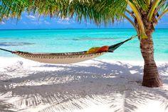 Google Afbeeldingen resultaat voor http://www.tuinposter.nl/library/original/59038-hangmat-tussen-palmbomen-op-de-maladiven-versie-2.jpg