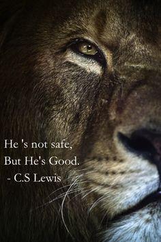 De Leeuw van Juda is niet tam, maar Hij is goed! Ik ben onder de indruk van de manier waarop C.S. Lewis iets laat zien van wie Jezus is door de Leeuw Aslan in de Kronieken van Narnia. The Chronicles of Narnia have so many memorable parts!