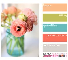 peach, green, blue, persimmon and gray