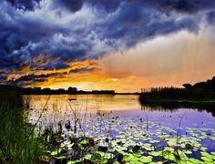Blue and Orange Sunset In Florida