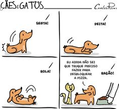Um Sábado Qualquer | Cães e Gatos Phd Comics, Funny Comics, Animals And Pets, Funny Animals, Cute Animals, Cat Love, I Love Dogs, Top Memes, Funny Memes