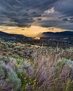 View of Kamloops from Rose Hill -- Curated by: Desert City Security Inc. Great Places, Places To See, Beautiful Places, Vancouver, Alberta Travel, Canadian Travel, Visit Canada, British Columbia, Vacation Spots