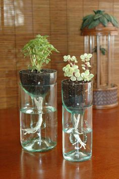 Glass bottle cut in half and inverted. Before filling in with dirt and planting, thread some oil lantern wick trough the top and down the bottle neck. This will absorb water up into the soil, giving you a self-watering planter!