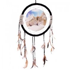 Brown Wolf Resting in the Snow 3D Picture Dreamcatcher
