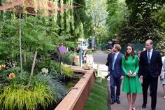 "Kensington Palace on Twitter: ""Lots of beautiful gardens on display @The_RHS #chelseaflowershow #RHSChelsea"