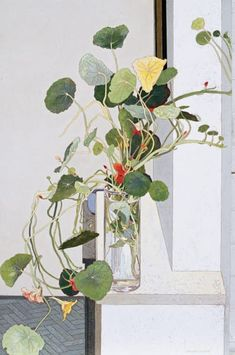 Australian artist Cressida Campbell (b. Sydney, Australia) is celebrated for her meticulous technique that combines both painting and printing. Botanical Drawings, Botanical Prints, Painting Inspiration, Art Inspo, Fleurs Art Nouveau, Illustrations, Illustration Art, Guache, Arte Floral