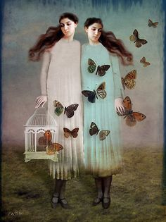 "So evocative--perhaps a story that begins with ""One day we set all the butterflies free..."""
