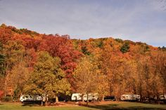 Year-Round Adventure in Ohio's Mohican Country The Hunting Ground, Camping In Ohio, Pleasant Hill, State Forest, Lake Park, Mount Vernon, Bike Trails, Covered Bridges, Trip Planning