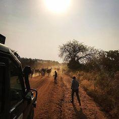 Cara Delevingne @caradelevingne:  Uganda Cara Delevingne, Uganda, Around The Worlds, Country Roads, Hollywood, Photo And Video, Face, Travel, Outdoor