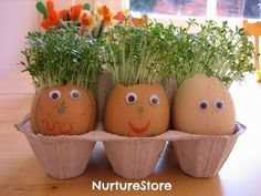 Eggheads with growing hair- eggcelent kids activity for Easter.