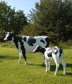 Yes, this really is a life-size cow. And if you have some spare cash Jessie is by far the best thing you can buy for your garden. A giant Friesian beauty, she will stand proudly on your lawn all year round never failing to amaze your friends and family. Unique Garden Decor, Garden Ideas, Garden Art, Wood Yard Art, Cow Kitchen, Holstein Cows, Cow Gifts, Cow Art, Friesian