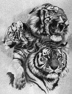 tiger 9 by agaricgreywolf on @DeviantArt