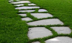 I really like this stone / grass walkway.  Thinking about doing this.