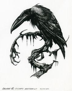 Image result for raven fight