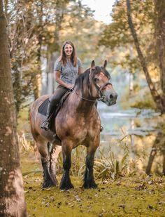 (92) I Love Horses - Photos