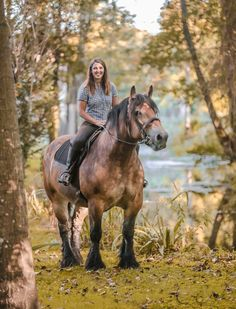 photo: Corinne Eisele I Love Horses Big Horses, Work Horses, Horse Love, All The Pretty Horses, Beautiful Horses, Animals Beautiful, Horse Photos, Horse Pictures, Zebras