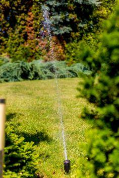 Jak założyć samodzielnie system automatycznego nawadniania ogrodu?