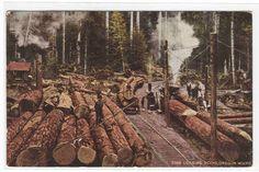 Logging Scene Railroad Car Logs Oregon 1915 Postcard | eBay