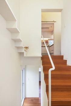 Galería - Casa 50m2 / OBBA - 5