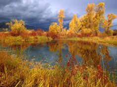 Картинки по запросу осень небо