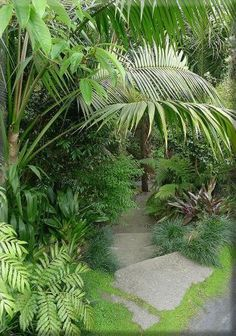Warm Tropical Backyard Landscaping Ideas (19)