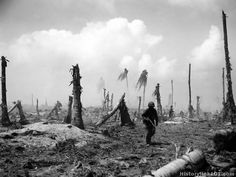 Battle of Perry Island, Eniwetok Atoll. Perry Island, Eniwetok Atoll - 1944