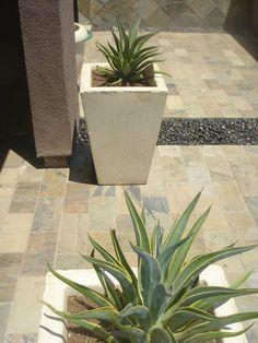 Ideas for a backyard garden Front Yard Landscaping, Landscaping Ideas, Backyard Ideas, Garden Ideas, Desert Backyard, Desert Design, Southwestern Decorating, Parts Of A Plant, House Landscape