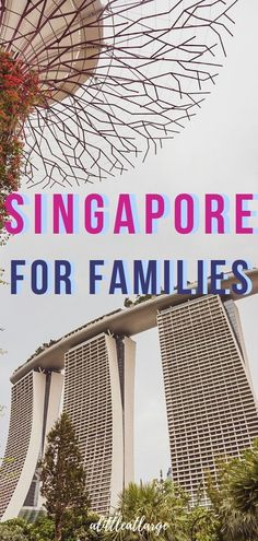 The best hotels to stay at in Singapore if you are traveling as a family. Find out everything you need to know about Singapore's premier hotels and resorts, to help you decide which one to bring your kids to. Singapore Travel, Family Adventure, Adventure Travel, Travel With Kids, Family Travel, Amazing Destinations, Travel Destinations, Travel Guides, Singapore