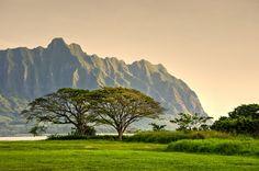 Kualoa Range, Oahu, Hawaii [2048x1360] (OC) pixels) - Scaled (50%)