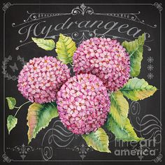 Check out this new painting that I uploaded to plout-gallery.pixels.com! http://plout-gallery.pixels.com/featured/hydrangeas-jp3888-jean-plout.htmlNone