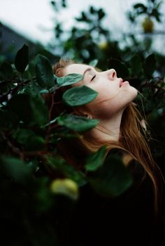 Serenity | via Tumblr