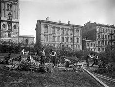 Istutustöitä Katajanokan puistossa vuonna 1907 [Signe Brander, HKM]