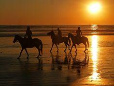 Nightly-Ride: Horseback ride on Playa Santa Teresa in Costa Rica