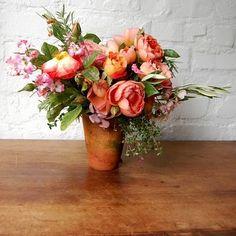 aren't wild roses the best?