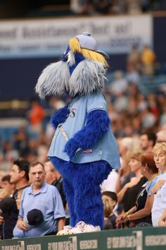 Happy Labor Day from Raymond and the Rays!