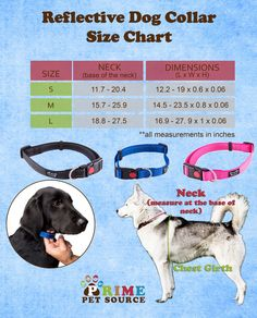 Three different colors, three different sizes, all made from high quality, double stitched, reflective materials! Pick yours up on Amazon! http://www.amazon.com/Reflective-Locking-Prime-Pet-Source/dp/B00KQT66HG/ref=aag_m_pw_dp?ie=UTF8&m=A1J83IXKK13EVG