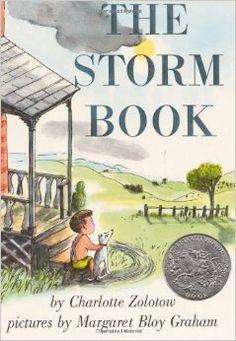 The Storm Book: Charlotte Zolotow, Margaret Bloy Graham: 9780064431941: Amazon.com: Books